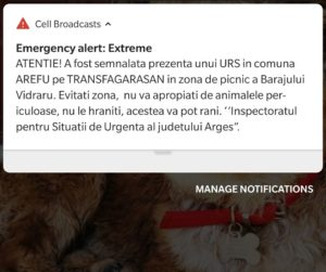 Alerta urs în zona Transfăgărășan
